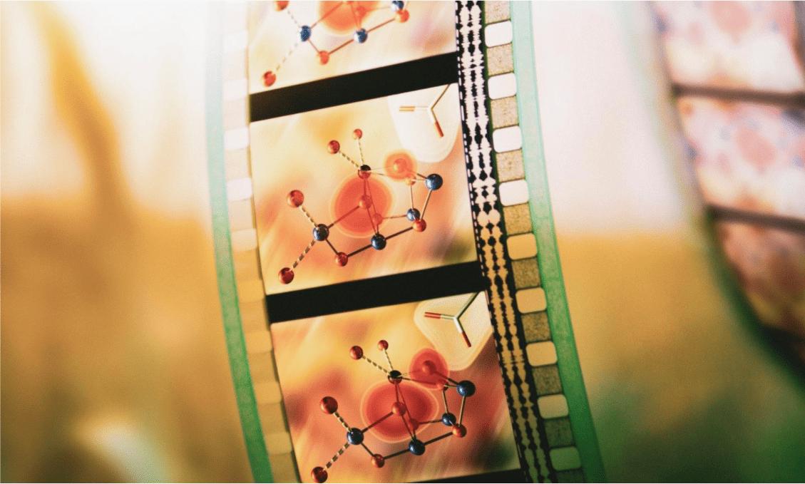 "Fotosintesi: un ""film molecolare"" ne rivela dettagli mai visti prima"