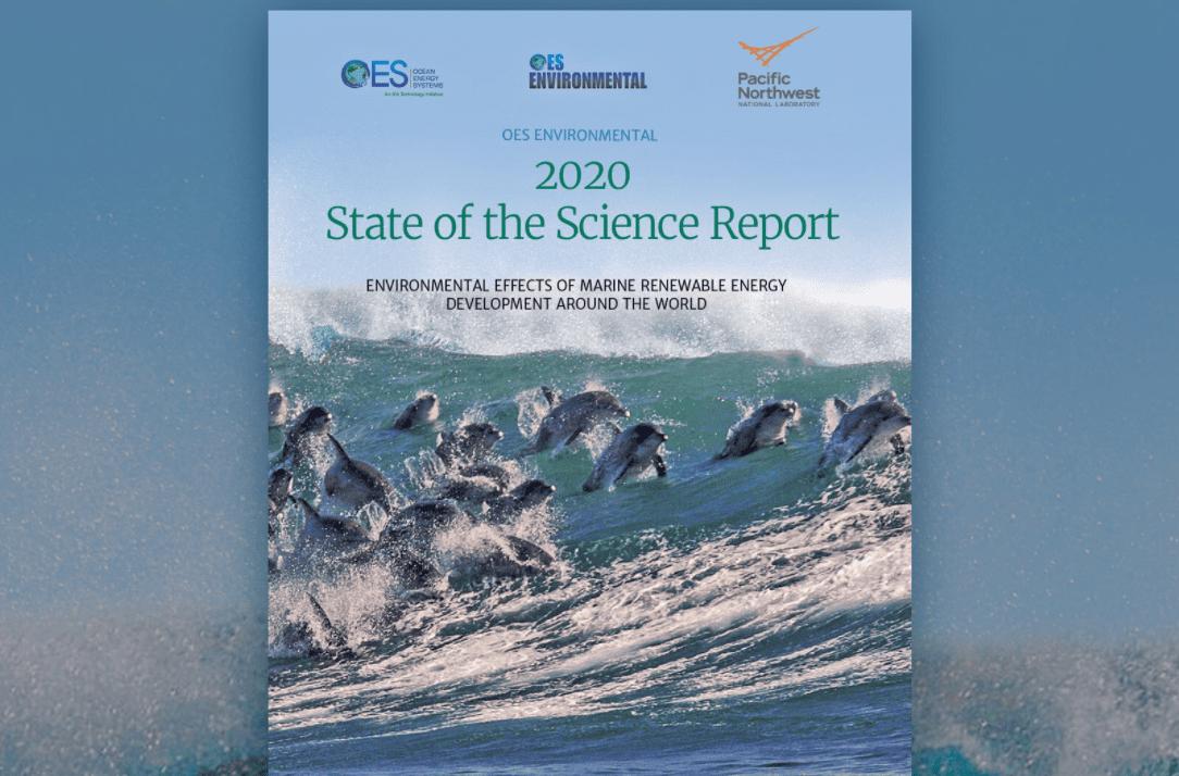 Energia rinnovabile dal mare: i dispositivi per ottenerla hanno un impatto minimo sulla vita marina