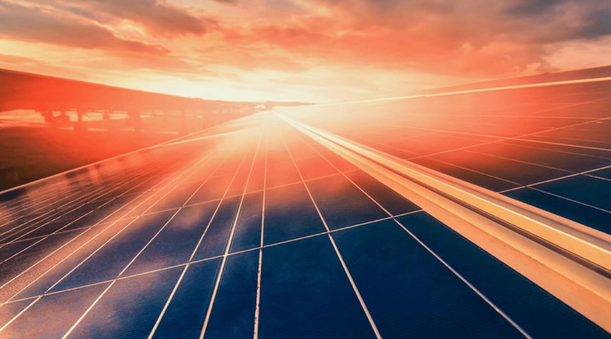 Potenziali scoperte nella tecnologia dell'energia solare: gli indizi ce li fornisce la natura