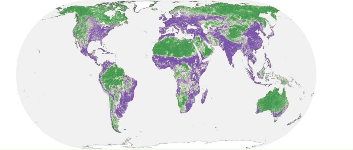 Metà della Terra può ancora essere salvata dai danni umani