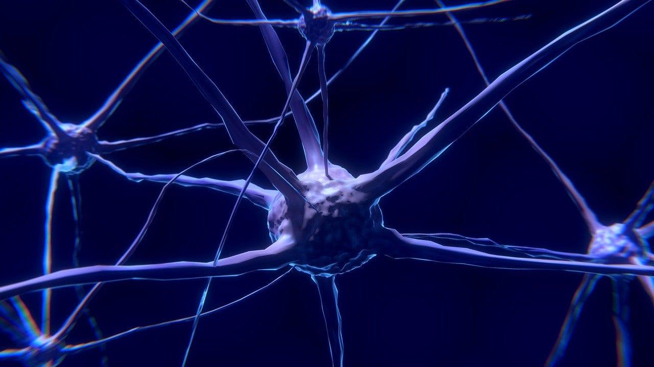 Neuroni morti