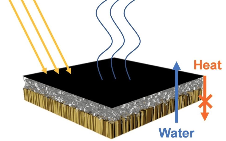 Purificare l'acqua con legno, batteri e sole