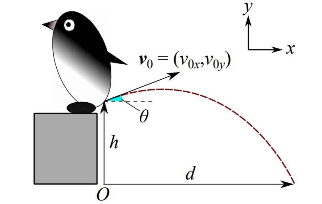 Quanta pressione serve ai pinguini per sparare le loro feci lontano dal nido?