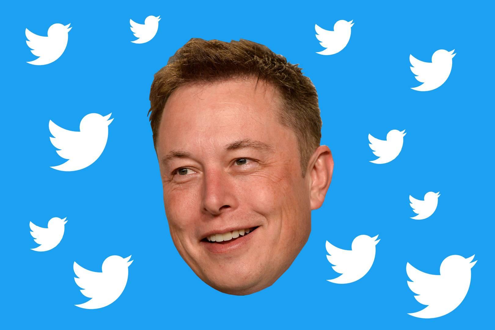 Elon Musk invita i suoi follower a investire su Gamestop