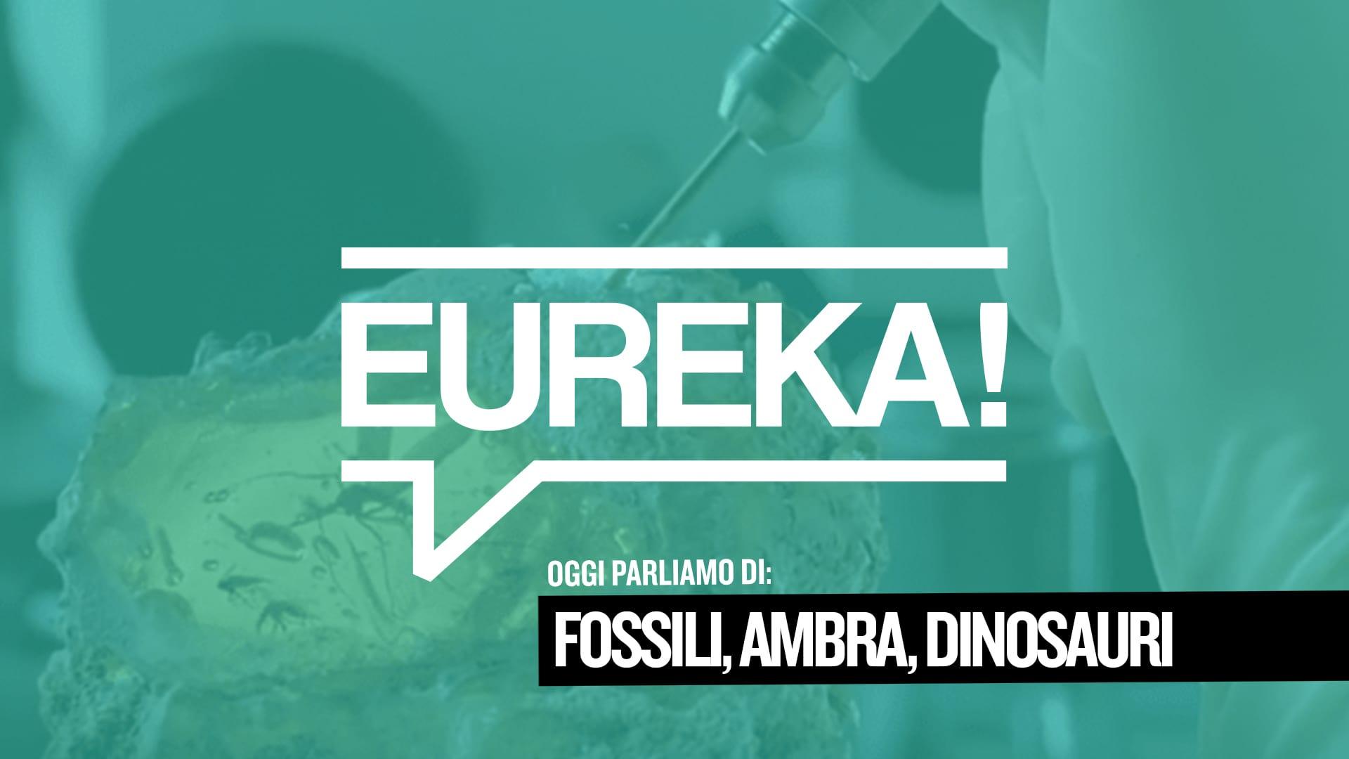 Eureka! 02 – Ambra e dinosauri tra finzione e realtà