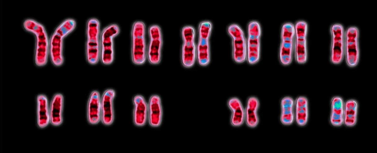 Coronavirus: severità aggravata con i geni di Neanderthal