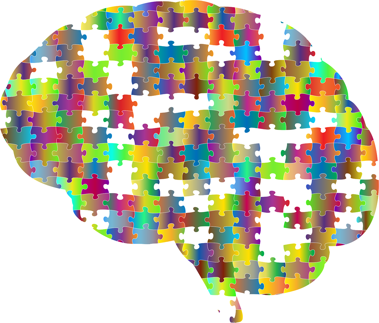 Cervello: per riconoscere gli oggetti bastano 49 proprietà