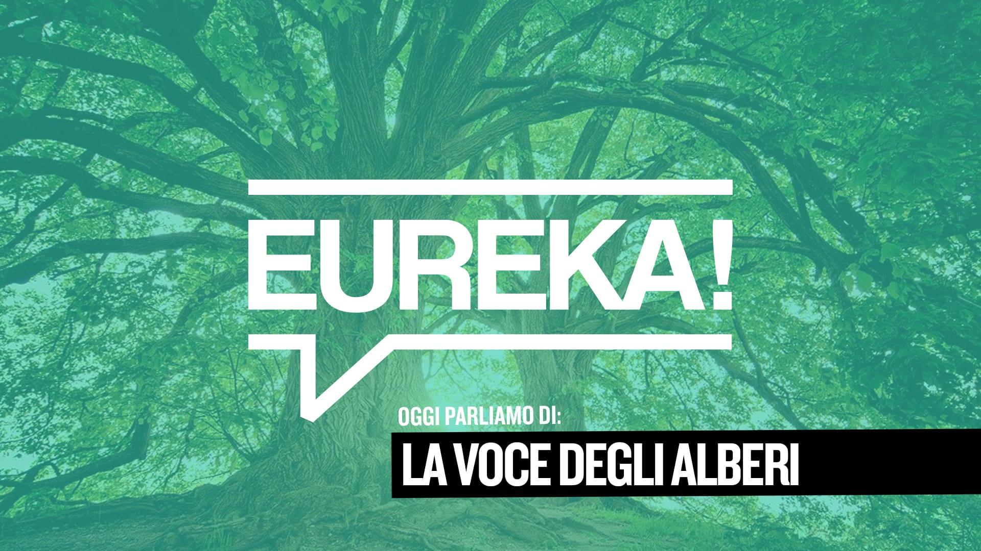 Eureka! 07 – La voce degli alberi
