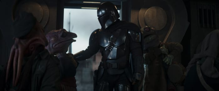 The Mandalorian and Frog Lady