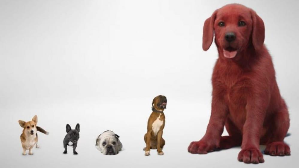 clifford-the-big-red-dog-teaser