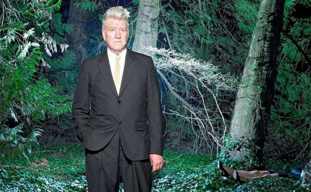 david lynch wisteria