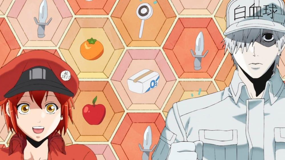 Cells at Work: Yamato Video ha annunciato la seconda stagione