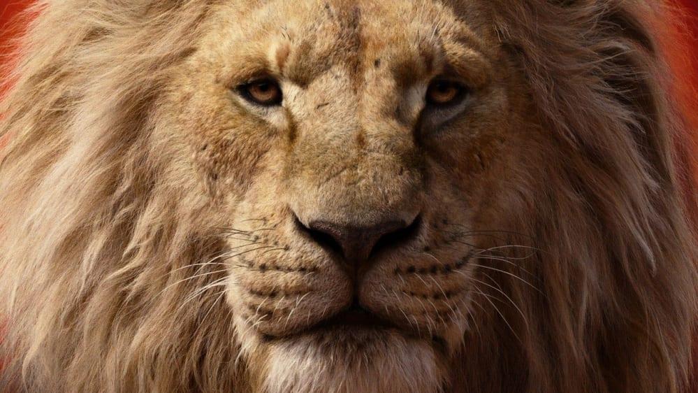 il prequel del re leone