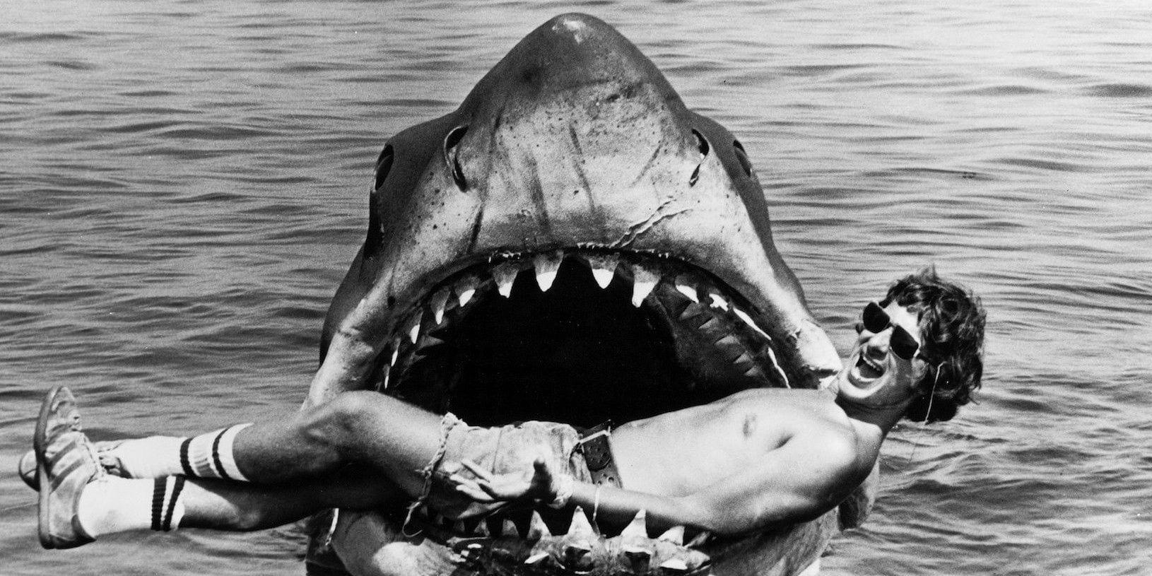 Lo Squalo: Steven Spielberg si è quasi rifiutato di realizzare il film