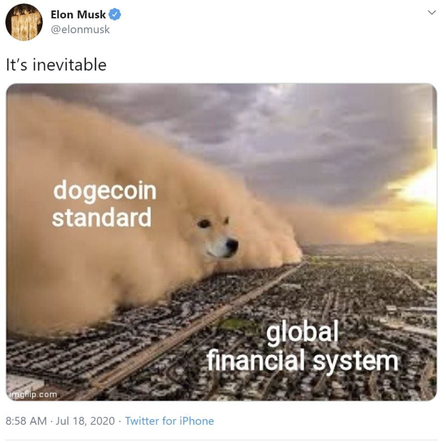 """Elon Musk non abbandona i Dogecoin: """"al lavoro per rendere le transazioni più efficienti"""""""