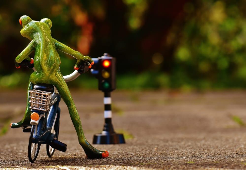 rana in bicicletta con semaforo