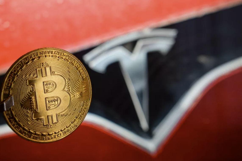 """""""Tesla scelga: o l'ambiente o i bitcoin, entrambi non si può"""""""