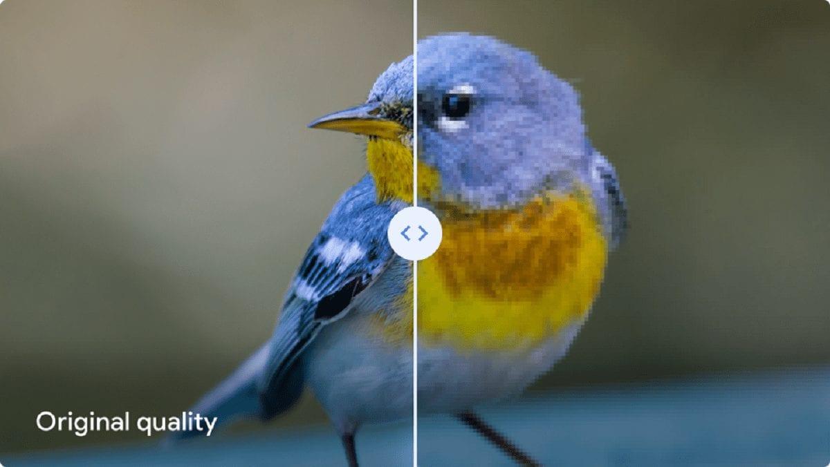 """Google Foto, bigG sconsiglia la compressione """"Alta Qualità"""""""