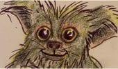 Gremlins: i primi disegni originali dei Mogwai e di un Gremlin