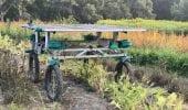 Un robot si muove per conquistare i piccoli campi agricoli