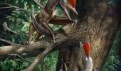 Scoperte le creature più antiche con il pollice opponibile, sono degli pterosauri