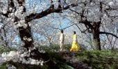 Takeshi Kitano: i 10 migliori film del regista giapponese