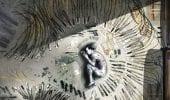 Suicide Squad: David Ayer rivela una concept art di Joker