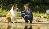 Lassie torna a casa: trailer del ritorno in pompa magna del collie più amato di sempre
