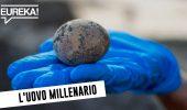Archeologia: un uovo intatto... di mille anni fa! #InPochiMinuti