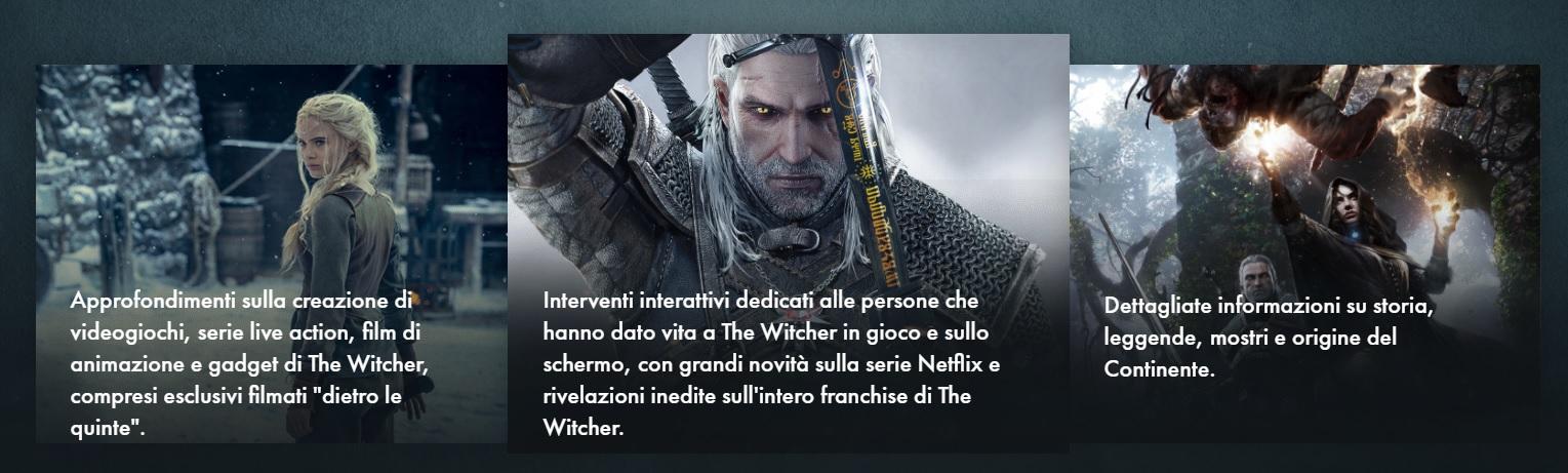 witcherCon info