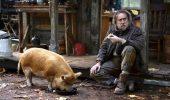 Pig: trailer italiano del nuovo film con Nicolas Cage... a caccia del suo maiale