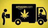 Amazon si schiera per la legalizzazione della cannabis, perché gli conviene