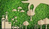 Amazon investe 20 milioni di euro per combattere il cambiamento climatico in Italia