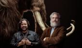 Una startup vuole creare in laboratorio dei mammut lanosi