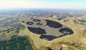 Cina, il costo dell'energia solare raggiunge la parità con il carbone: non era mai successo