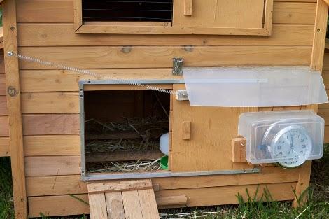 Apertura automatica pollaio diy leganerd for D20 chicken coop motor door