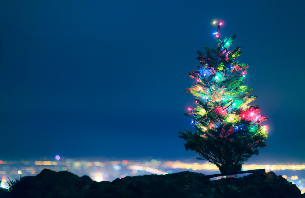 Natale secondo i lettori di tbp leganerd for Secondo di natale